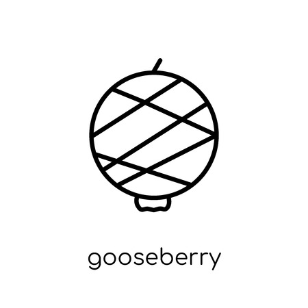 gooseberry icon. Trendy modern flat linear vector gooseberry icon on white background from thin line Fruit and vegetables collection, outline vector illustration