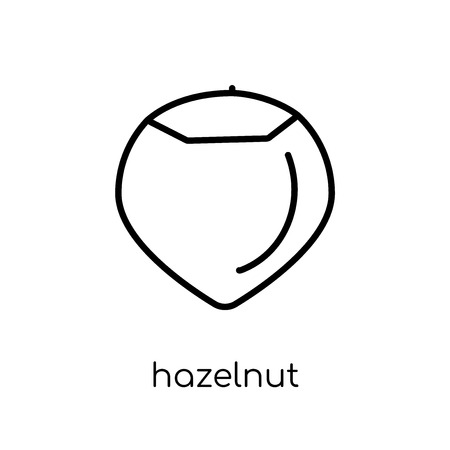 hazelnut icon. Trendy modern flat linear vector hazelnut icon on white background from thin line Fruit and vegetables collection, outline vector illustration Illustration