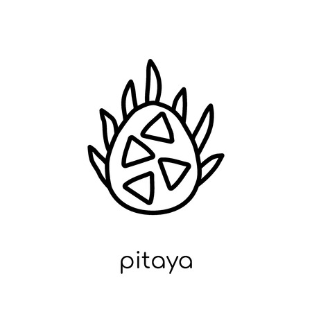 pitaya icon. Trendy modern flat linear vector pitaya icon on white background from thin line Fruit and vegetables collection, outline vector illustration Illustration