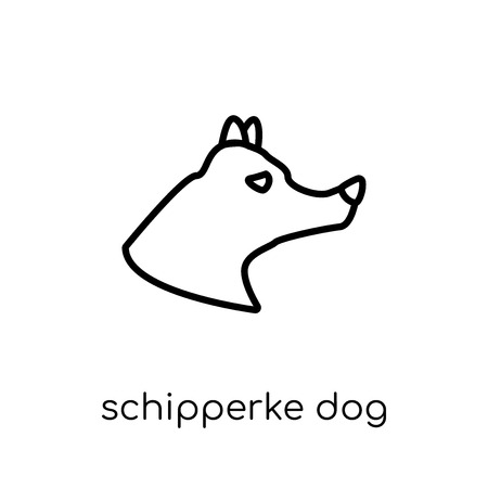 Schipperke dog icon. Trendy modern flat linear vector Schipperke dog icon on white background from thin line dogs collection, editable outline stroke vector illustration Illustration