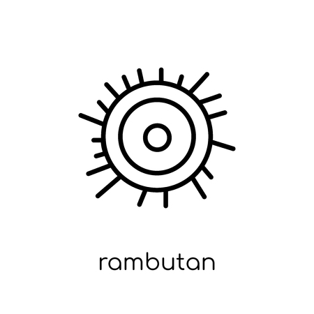rambutan icon. Trendy modern flat linear vector rambutan icon on white background from thin line Fruit and vegetables collection, outline vector illustration