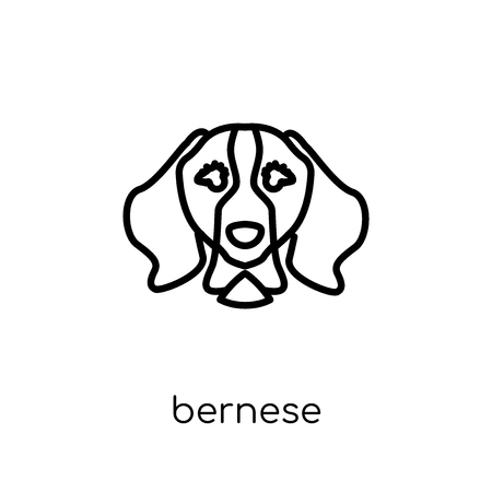 Bernese Mountain dog icon. Trendy modern flat linear vector Bernese Mountain dog icon on white background from thin line dogs collection, editable outline stroke vector illustration