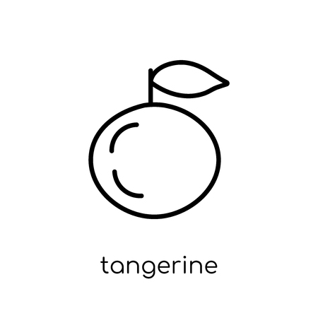 tangerine icon. Trendy modern flat linear vector tangerine icon on white background from thin line Fruit and vegetables collection, outline vector illustration Illustration