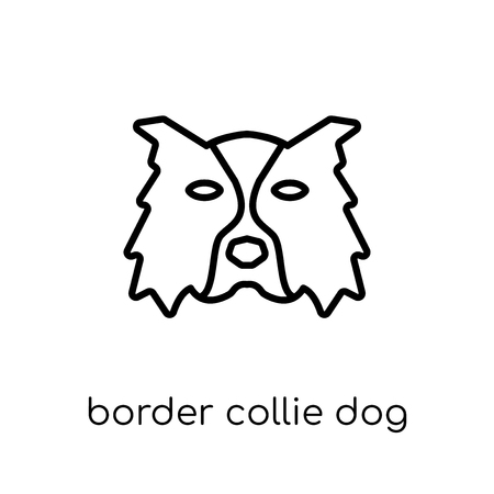 Border Collie dog icon. Trendy modern flat linear vector Border Collie dog icon on white background from thin line dogs collection, editable outline stroke vector illustration