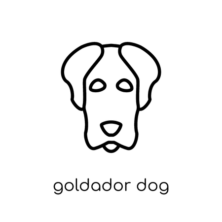 Goldador dog icon. Trendy modern flat linear vector Goldador dog icon on white background from thin line dogs collection, editable outline stroke vector illustration