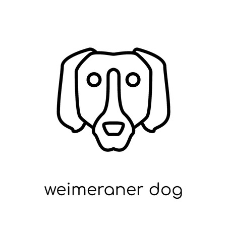 Weimeraner dog icon. Trendy modern flat linear vector Weimeraner dog icon on white background from thin line dogs collection, editable outline stroke vector illustration