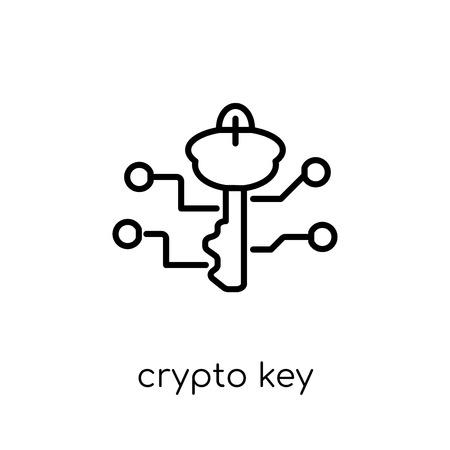crypto key icon. Trendy modern flat linear vector crypto key icon on white background from thin line Cryptocurrency economy and finance collection, editable outline stroke vector illustration Illustration