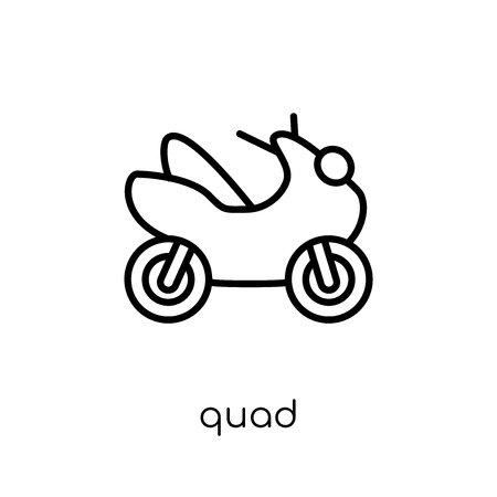 quad icon. Trendy modern flat linear vector quad icon on white background from thin line collection, outline vector illustration