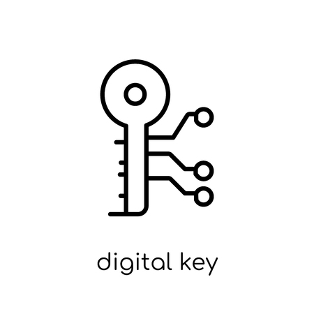 Digital key icon. Trendy modern flat linear vector Digital key icon on white background from thin line Cryptocurrency economy and finance collection, editable outline stroke vector illustration