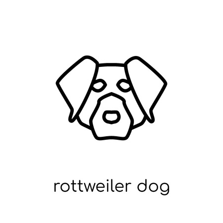 Rottweiler dog icon. Trendy modern flat linear vector Rottweiler dog icon on white background from thin line dogs collection, editable outline stroke vector illustration