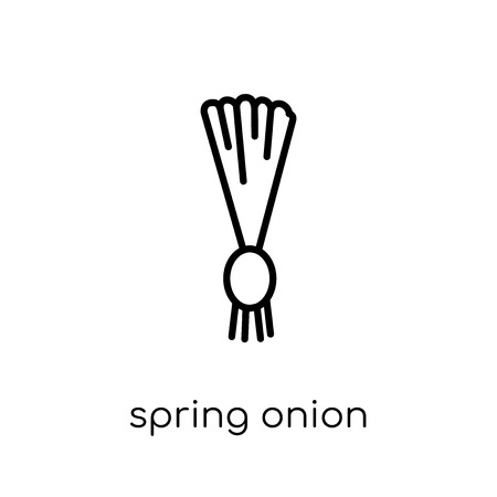 spring onion icon. Trendy modern flat linear vector spring onion icon on white background from thin line Fruit and vegetables collection, outline vector illustration
