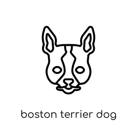 Boston Terrier dog icon. Trendy modern flat linear vector Boston Terrier dog icon on white background from thin line dogs collection, editable outline stroke vector illustration Illustration