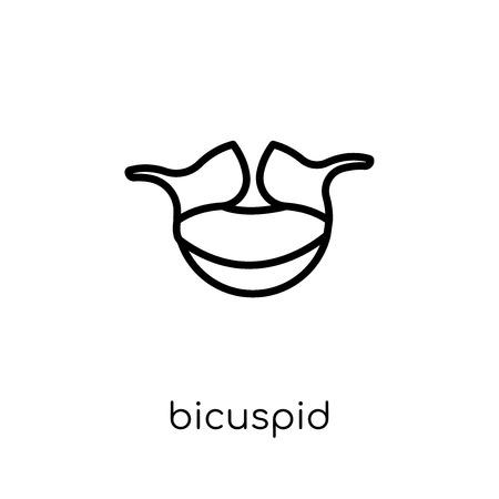 Bicuspid-Symbol. Trendiges modernes flaches lineares Vektor-Zweispitz-Symbol auf weißem Hintergrund aus der dünnen Linie Zahnarztsammlung, bearbeitbare Konturstrich-Vektorillustration