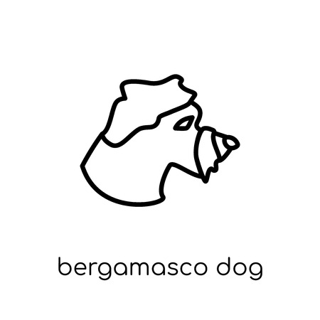 Bergamasco dog icon. Trendy modern flat linear vector Bergamasco dog icon on white background from thin line dogs collection, editable outline stroke vector illustration Illustration