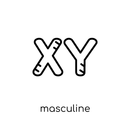 Masculine Chromosomes icon. Trendy modern flat linear vector Masculine Chromosomes icon on white background from thin line Human Body Parts collection, editable outline stroke vector illustration Illustration