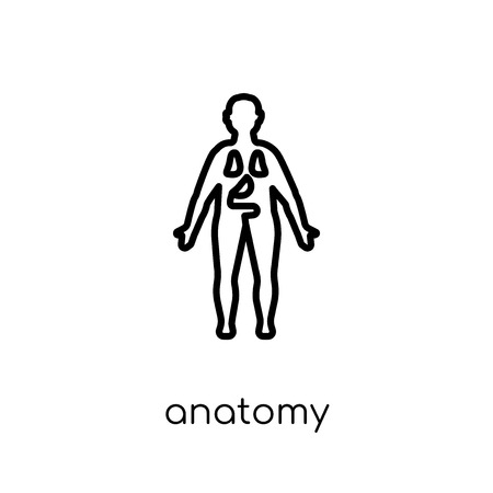 Anatomy icon. Trendy modern flat linear vector Anatomy icon on white background from thin line Gym and fitness collection, editable outline stroke vector illustration