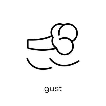 gust icon. Trendy modern flat linear vector gust icon on white background from thin line Weather collection, outline vector illustration  イラスト・ベクター素材