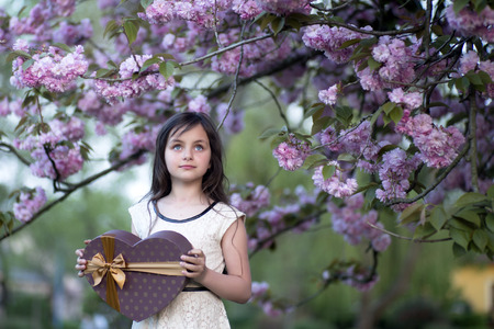 copyspase: Little brunette smiling girl looking away holding big brown heart shaped present box standing among japanese cherry blossom in the park copyspase, horizontal picture Stock Photo