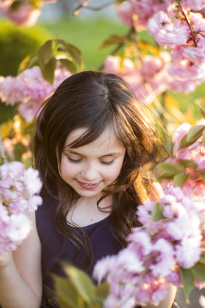 Small brunette girl looking down standing amid pink japanese cherry bloom in broad daylight in the park, vertical picture photo