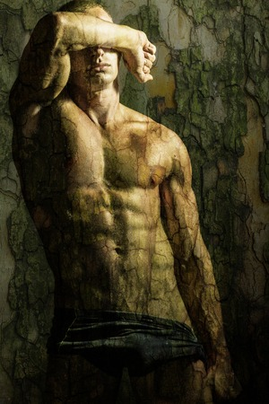 樹皮の質感を持つハンサムな上半身裸の若い男の胴体
