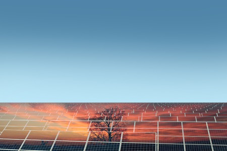 solarcell: Solar panel with reflection of orange sundown with tree on clear blue sky background copyspace, horizontal picture