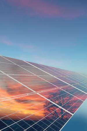 澄んだ青い空の背景画像の垂直方向の木とオレンジ色の日没の反射で太陽電池