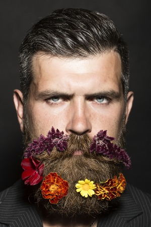 sullen: Portrait of sullen unshaven man with long beard and hendlebar flowerbed moustache with marigolds flowers orange red and yellow violet purple color on black background, vertical picture