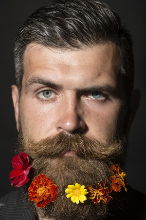 long beard: Portrait of handsome unshaven man with long beard and hendlebar flowerbed moustache with colorful marigolds flowers orange red and yellow color looking forward on black background, vertical picture