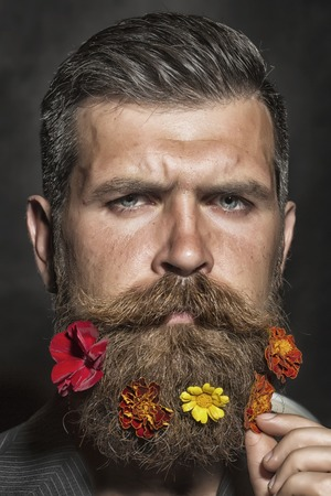 morose: Portrait of morose unshaven man with long beard and hendlebar flowerbed moustache with colorful marigolds flowers orange red and yellow color looking forward on black background, vertical picture Stock Photo