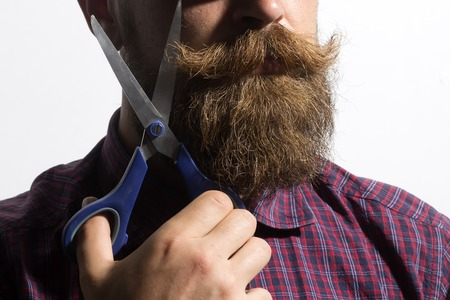 male facial: Closeup of unshaven man in violet checkered shirt with long beard and handlebar moustache holding scissors in hand standing isolated on white background, horizontal picture Stock Photo