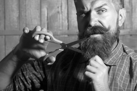 femme brune sexy: Portrait of emotional man in checkered shirt cutting long beard and handlebar moustache with scissors making new style standing on wooden wall background black and white, horizontal picture Banque d'images
