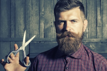 Portrait of unshaven man in violet checkered shirt with long beard and handlebar moustache holding sharp scissors looking forward standing on wooden wall background, horizontal picture Standard-Bild
