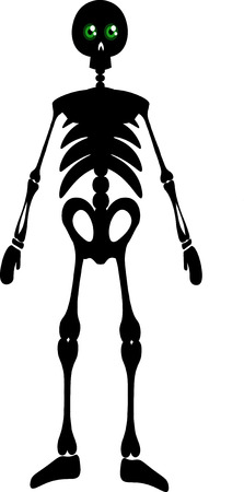 full length: Vector silhouette full length illustration of one drawn black color standing human skeleton with bones and round green eyes as halloween holiday symbol on white background Illustration