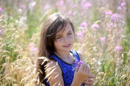 vale: Portrait of pretty young brunette pensive girl with long hair in blue lace dress standing among violet field flowers and spikelet in vale looking forward sunny day outdoor, horizontal photo
