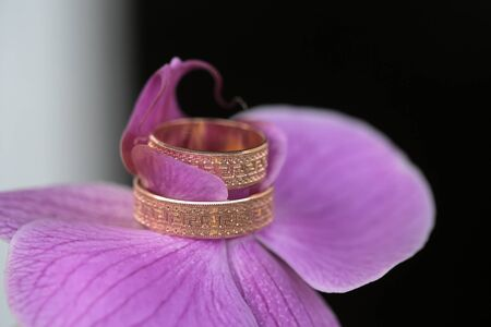purple metal: Closeup of purple fresh orchid flower with two beautiful wedding golden rings on dark blur backgroud, horizontal picture Stock Photo