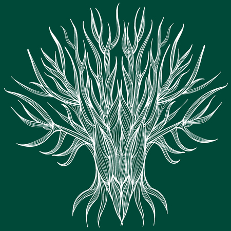 leafless: Vector illustration of one drawn from white lines bare tree with leafless branches full length standing on green background