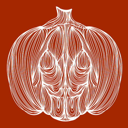 cinderella pumpkin: Vector illustration of one drawn from white lines halloween holiday pumpkin or cinderellas vegetable on orange or brown background Illustration