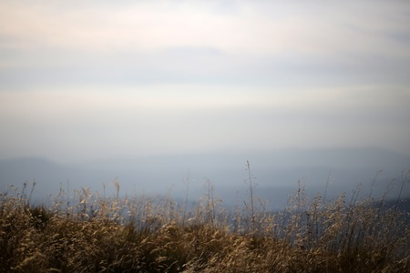 spaciousness: Beautiful spaciousness landscape closeup view from high hill top on many mountain humps in fog dry grass and cloudy grey blue sky on natural background, horizontal picture