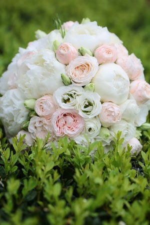 pion: Beautiful fresh soft wedding decorative round shape bouquet of pink rose white peony and green flowers lying on green lush bush on natural background outdoor, vertical picture
