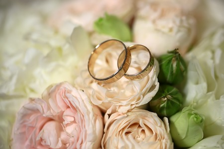 pink wedding: Closeup view of beautiful fresh soft wedding decorative bouquet of pink rose white peony and green flowers with two golden rings, horizontal picture