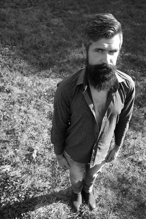 sexy funny: Top full length view of one handsome strong stylish male logger of young man with long lush beard and moustache in shirt standing straight on grass outdoor black and white, vertical picture