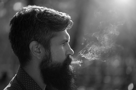 senior smoking: Closeup portrait side view of one senior serious man with long lush beard holding in mouth and smoking unhealthy cigarette with smoke sunny day outdoor black and white, horizontal picture Stock Photo