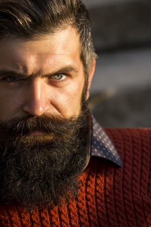 Closeup portrait of one handsome senior serious man with long black beard in red sweater looking forward sunny day outdoor on natural background, vertical picture Foto de archivo