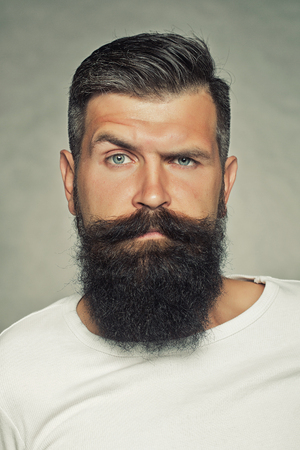 Portrait closeup of one handsome sensual grey-haired unshaven man with long beard moustache and eyebrow raised model looking forward in studio on light background, vertical picture
