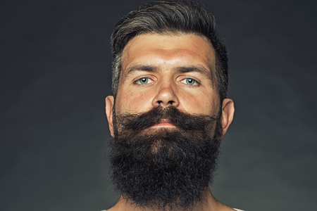Portrait closeup of one handsome sensual grey-haired unshaven tanned man with long beard and moustache model looking forward in studio on grey background, horizontal picture
