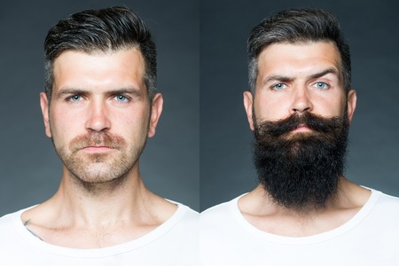 portrait: Collage portrait of one handsome man on left  bristle haired on right unshaved with long beard and moustache looking forward on grey background, horizontal picture
