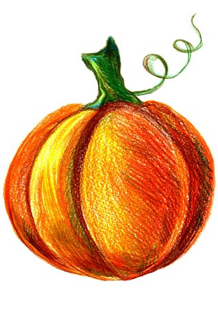 cucurbit: Art freehand pencil sketch illustration of one orange yellow and green halloween pumpkin vegetable on white background, vertical picture