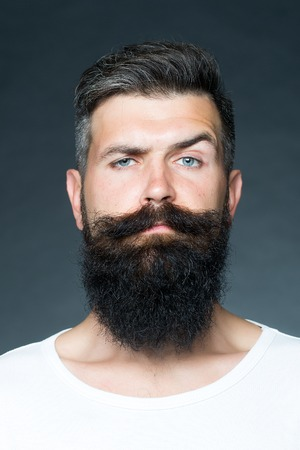 unshaven: Portrait closeup of one handsome sensual grey-haired unshaven tanned man with long beard and moustache model looking forward in studio on grey background, vertical picture
