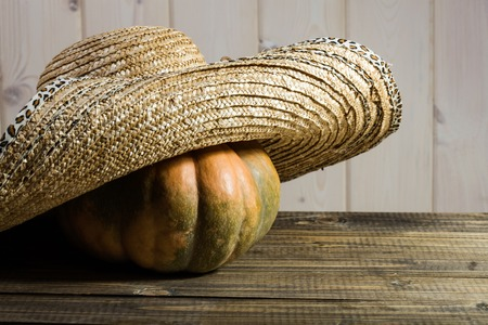 brim: Photo rustic autumn still life one big whole fresh orange pumpkin in feminine straw hat with wide flaps broad brim on wooden table on timber background, horizontal picture