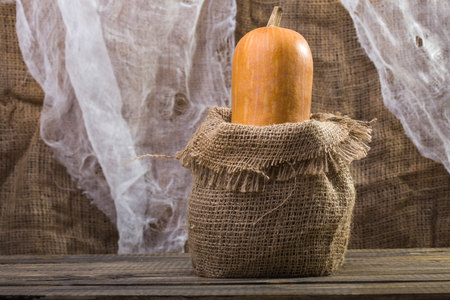 bagging: Photo closeup autumn still life one big whole fresh orange pumpkin gourd in sackcloth bagging standing on wooden table over rustic background, horizontal picture